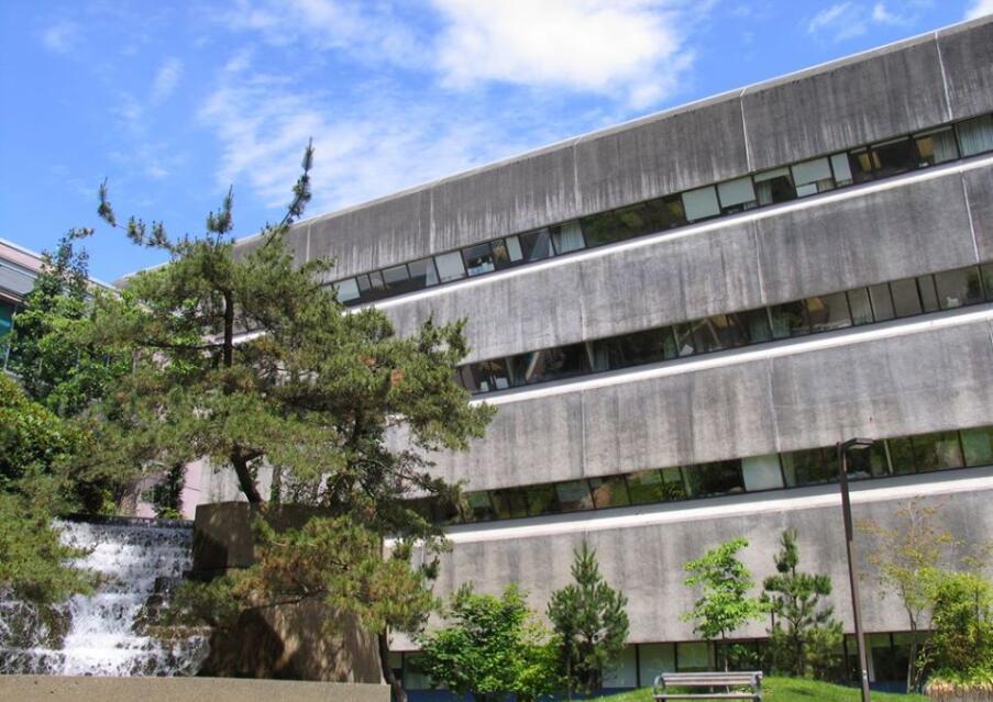 UCB School of Nursing