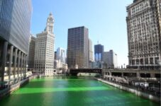 Chicago River colored green for St. Patrick's Day