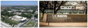 Study Abroad in University of California Davis